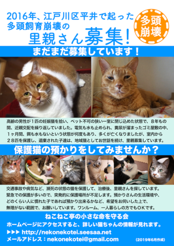 poster_azukari.png